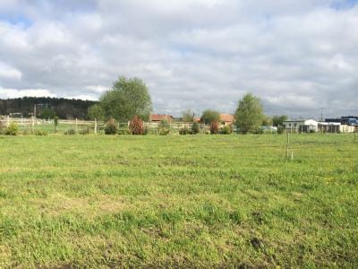 Domaine agricole Benesse Maremne