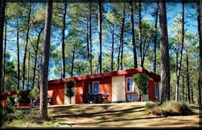 Appartement MOLIETS/Léon 3 pièces dans la forêt