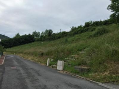Vente - Terrain - 1138 m2 - Saint Didier sur Beaujeu - Photo