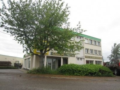 Location Local d'activités / Entrepôt Erstein 0