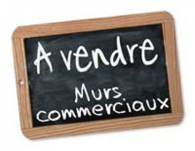 Vente Local commercial Roches-Prémarie-Andillé