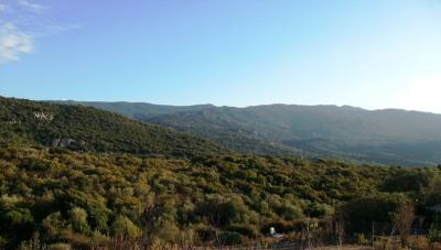 Terrain 1000 m² viabilisé-pleine propriété-Pietrosella-Accelasca