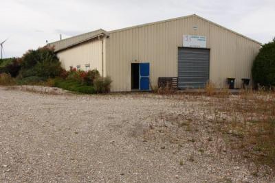 Location Local d'activités / Entrepôt Liomer
