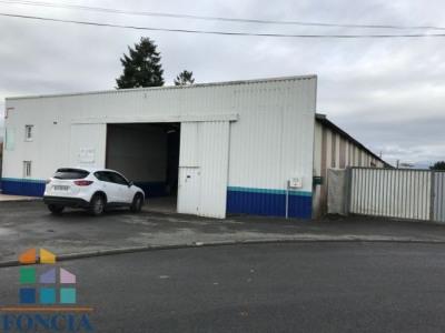 Vente Local d'activités / Entrepôt Villiers-en-Plaine