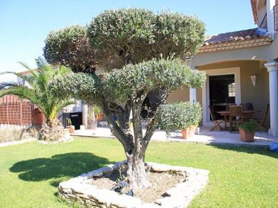 Maison a vendre à Aigues Mortes 6 pièce (s) 160 m²