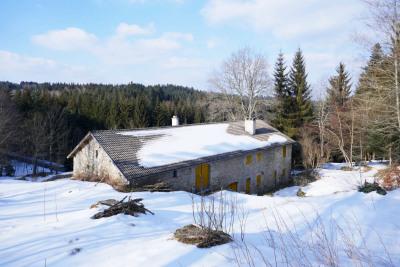 Belle ferme rénovée dans les bois - Logement annexe