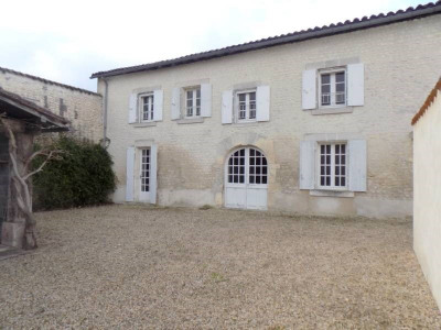 Vineyard 7 rooms Sud Est de Cognac