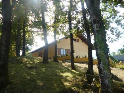 Vente maison / villa La Roche sur Foron
