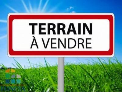 Vente Terrain Sargé-lès-le-Mans
