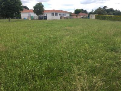 Terrain viabilisé HINX - 699 m²