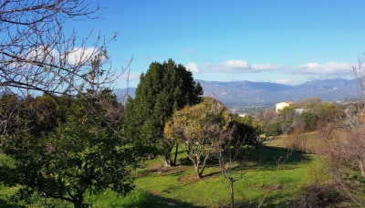Terrain plat hors lotissement de 833 m² à Bastelicaccia