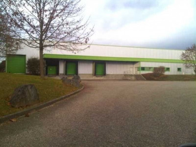 Location Local d'activités / Entrepôt Colmar