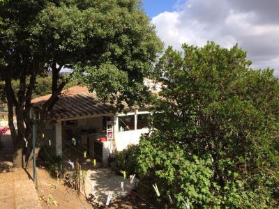 Villa T3 + T2 + T2 - Bisinao - Albitreccia