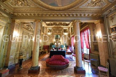 Exceptionnel rez-de-de jardin / Volumes / Cachet Second Empire