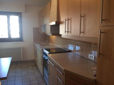 Appartement Strasbourg 2 pièce (s) 46.60 m²