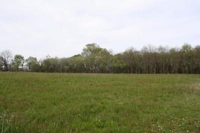 Terrain Proche Pontonx Sur L Adour 1000 m²
