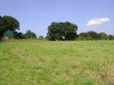 Site , 1245 m² - Kermoroc H (22140)