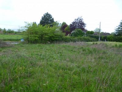 Terrain Mouroux 800 m²