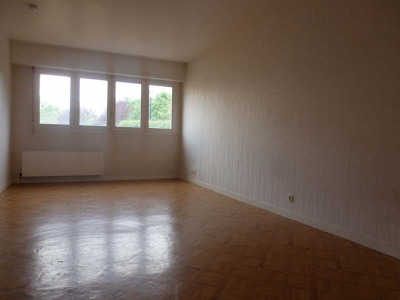 Grand studio 33 m²