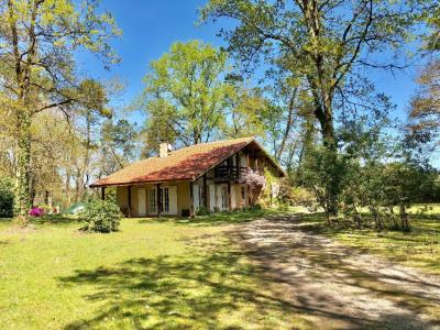 Maison entre Tartas et Pontonx 6 pièce (s) 150 m²