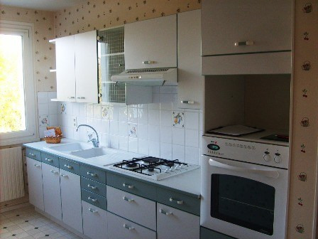Rental apartment Champforgeuil 589€ CC - Picture 6