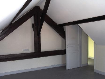 Rental apartment Pierre benite 478€ CC - Picture 1