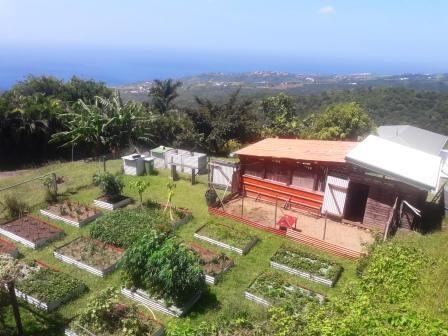 Vente maison / villa Case pilote 498000€ - Photo 10