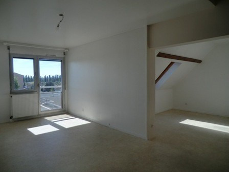 Location appartement Chatenoy le royal 820€ CC - Photo 1