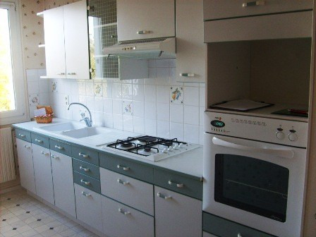 Rental apartment Champforgeuil 589€ CC - Picture 1