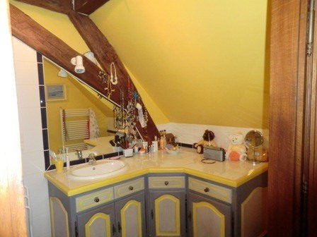 Vente maison / villa Alleriot 465000€ - Photo 10