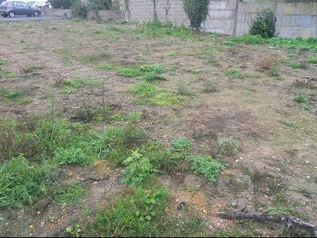 Vente terrain Cugand 33800€ - Photo 1