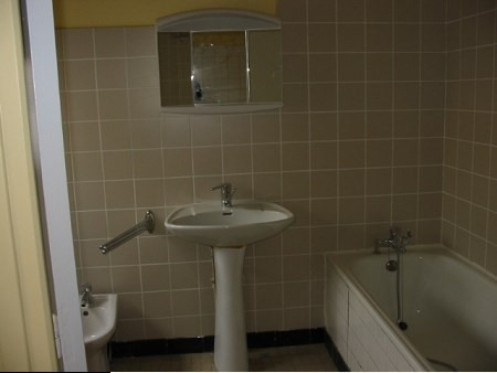 Rental apartment Villeurbanne 570€ CC - Picture 3