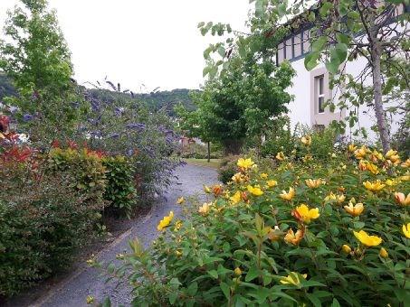 Rental apartment Hasparren 473€ CC - Picture 2