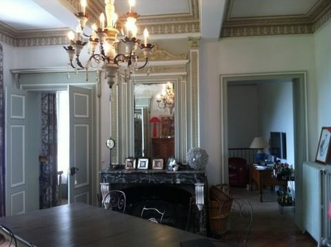 Deluxe sale chateau Toulouse 5 mn 1449000€ - Picture 5