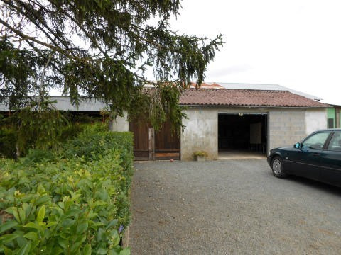 Sale house / villa Nere 78 000€ - Picture 7