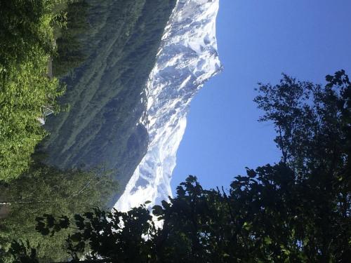 豪宅出售 - 空地 - 2079 m2 - Chamonix Mont Blanc - Photo