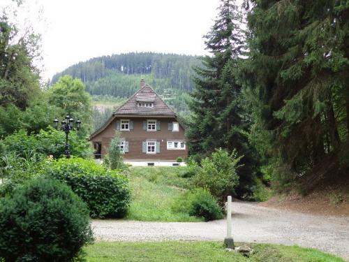 Продажa - дом 8 комнаты - Titisee-Neustadt - Photo