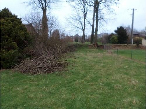 Verkoop  stukken grond Sassetot mauconduit 45000€ - Foto 5