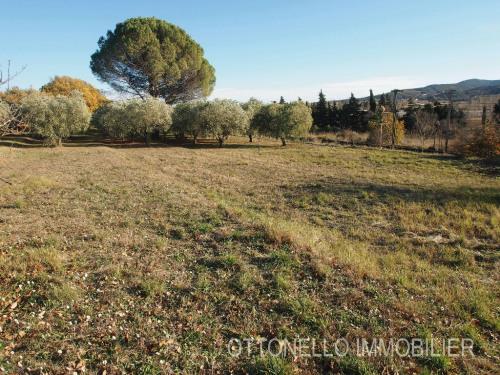 Vente - Terrain - 343 m2 - Roquebrune sur Argens - Photo