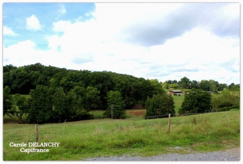 Vente - Terrain - 1200 m2 - Garlin - Photo