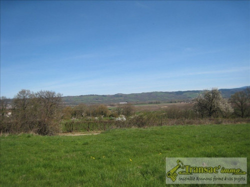 Vente - Terrain - 4654 m2 - Saint Sylvestre Pragoulin - Photo