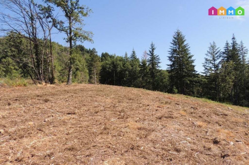 Vente - Terrain - 921 m2 - Aubenas - Photo