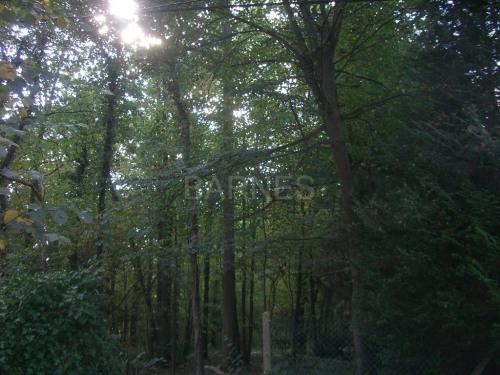 Vente de prestige - Terrain - 7312 m2 - Chantilly - Photo