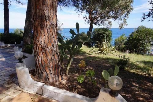 Deluxe sale - Villa 7 rooms - 160 m2 - Pilkino - Photo