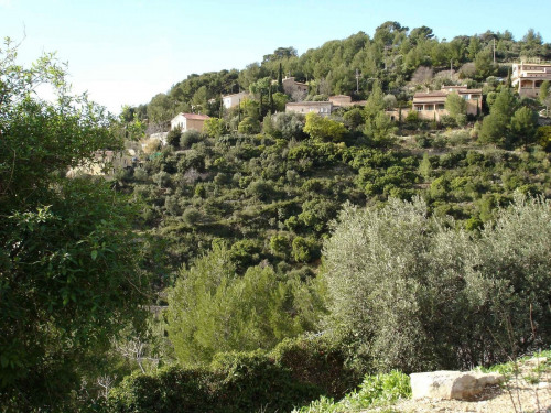 Vente - Terrain - 6250 m2 - Toulon - Photo