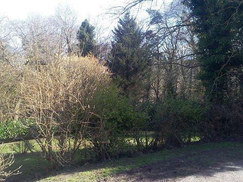 Sale house / villa Hautot/mer 363000€ - Picture 4