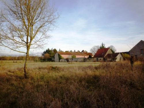 豪宅出售 - 城堡 10 间数 - 400 m2 - Bourges - Photo
