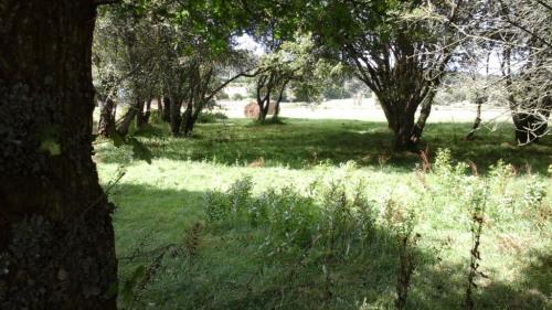 Vente - Corps de ferme 7 pièces - 164 m2 - Lignol - Photo