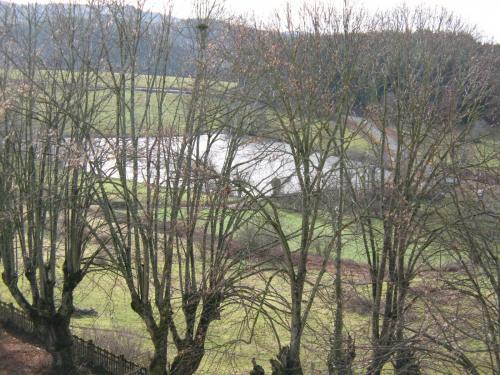 Vente - Château 45 pièces - 2500 m2 - Cublize - Photo