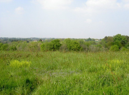 Vente - Terrain - 1800 m2 - Geaune - Photo